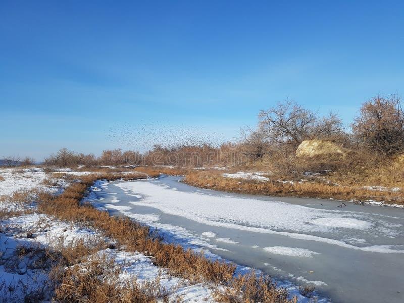 Paesaggio di inverno sulla costa immagini stock