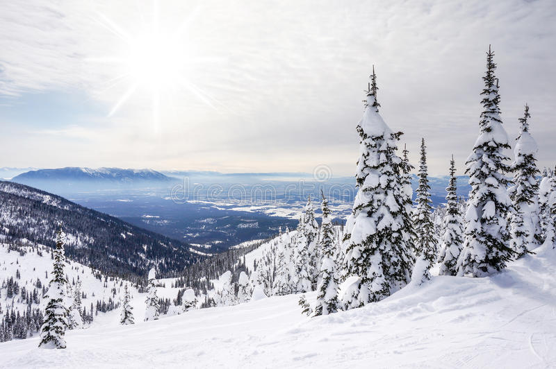 Paesaggio di inverno sulla grande montagna nel Montana fotografie stock libere da diritti