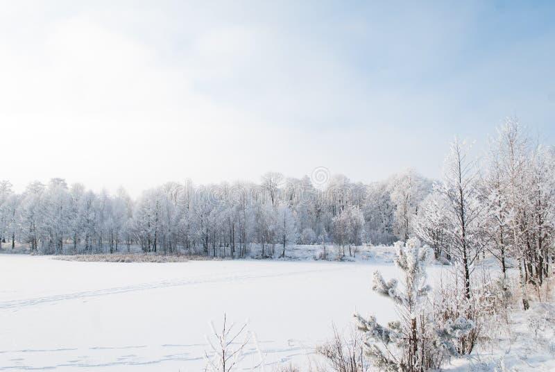 Paesaggio di inverno di un lago congelato, fotografie stock
