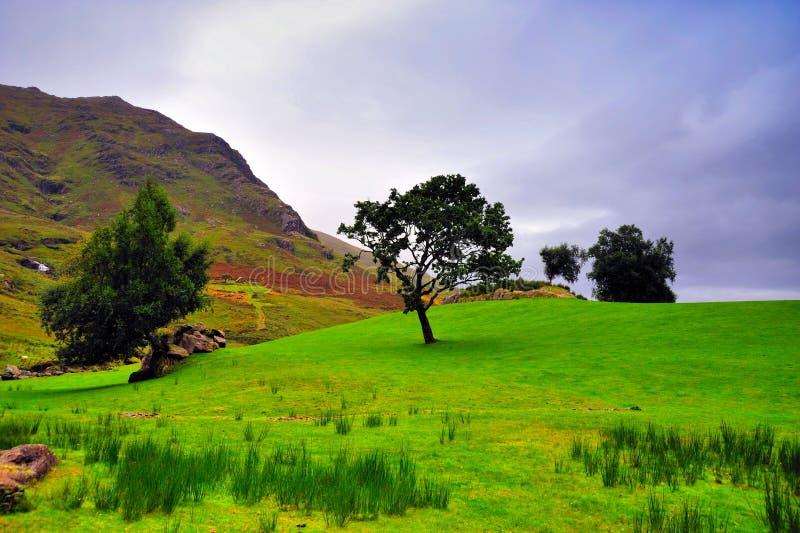 Paesaggio di Kerry fotografie stock