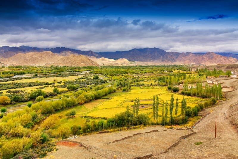 Paesaggio di Ladakh, il Jammu e Kashmir, India immagini stock libere da diritti