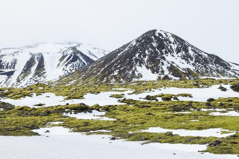 Paesaggio di Misty Icelandic con neve e muschio verde immagine stock