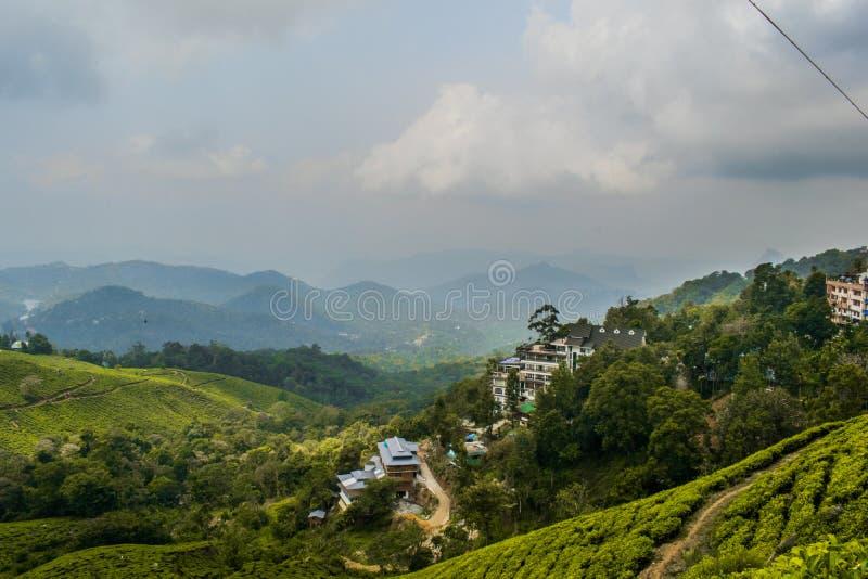 Paesaggio di Munnar fotografia stock