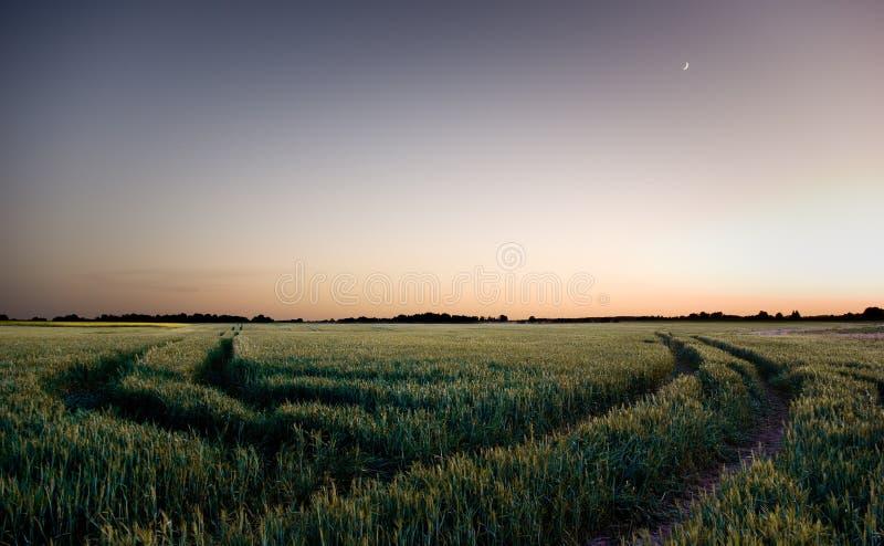 Paesaggio di notte immagine stock libera da diritti