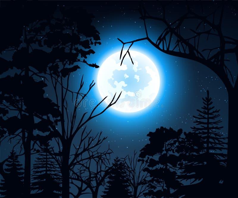 Paesaggio di notte con il cielo stellato e la luna piena for Semplici paesaggi