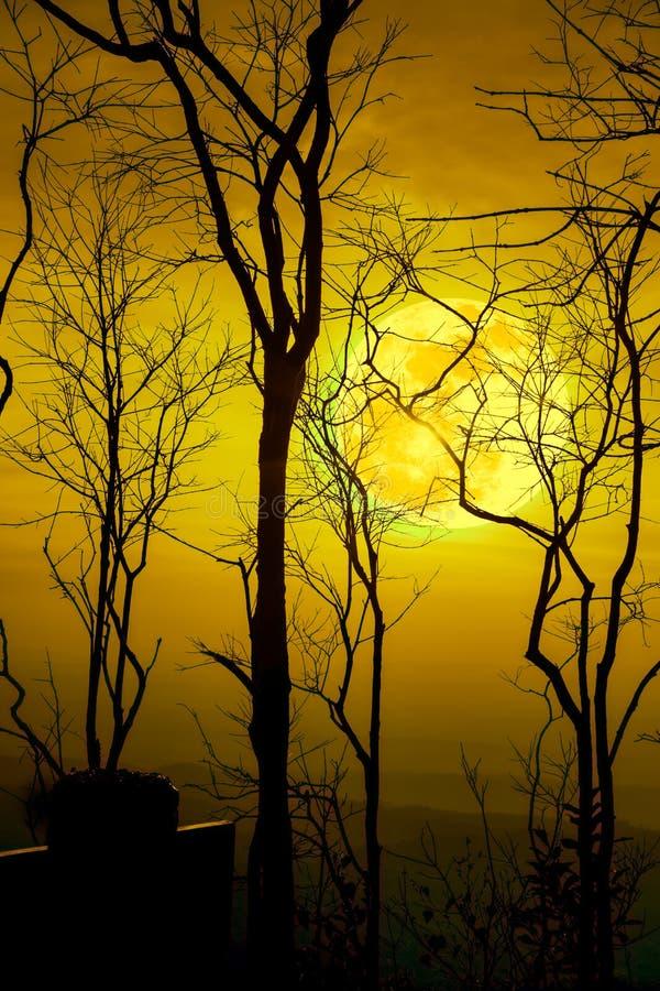 Paesaggio di notte del cielo con la luna eccellente luminosa dietro la siluetta fotografie stock