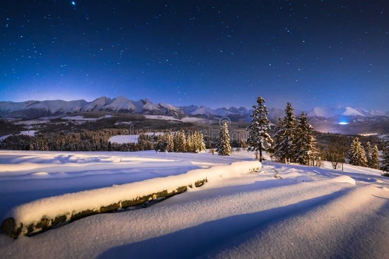 Paesaggio di notte di inverno   fotografie stock libere da diritti