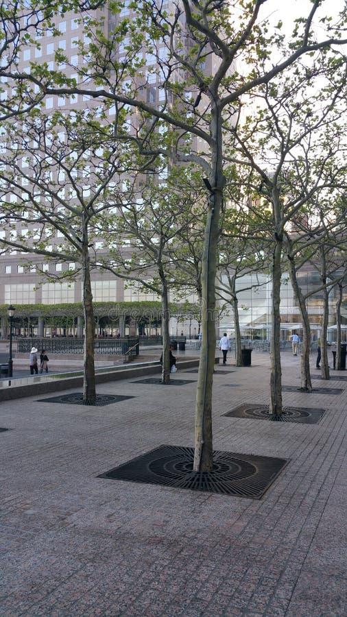 Paesaggio di NYC fotografie stock