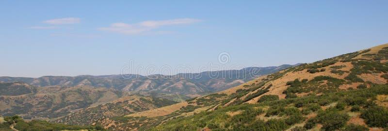 Paesaggio di Rolling Hills. U.S.A. fotografie stock libere da diritti
