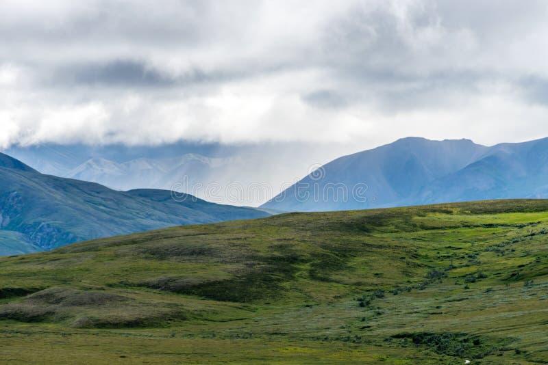 Paesaggio di rotolamento del parco nazionale del ` s Denali dell'Alaska fotografia stock