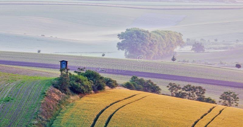 Download Paesaggio Di Rotolamento Di Moravian Con La Torre Di Caccia Fotografia Stock - Immagine di pastoral, campagna: 56886116