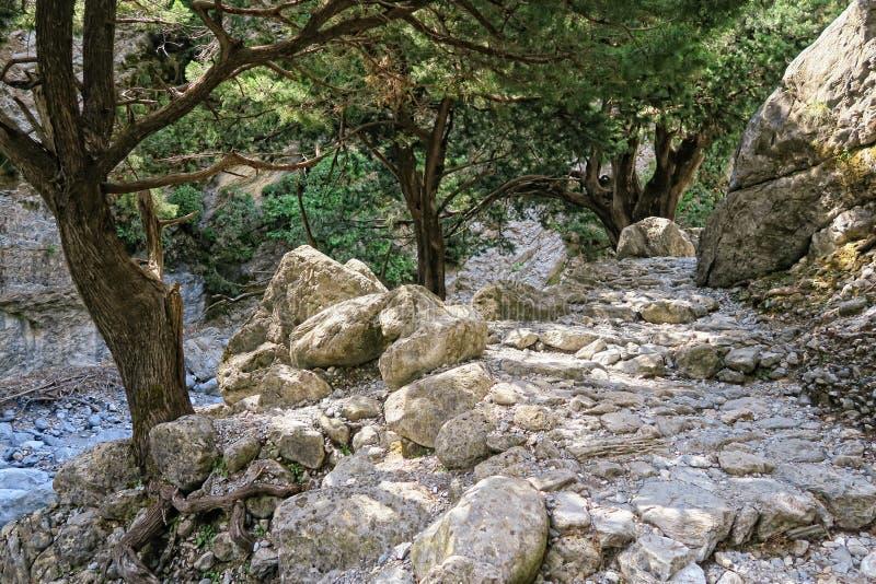 Paesaggio di Samaria Gorge a Creta Grecia fotografia stock