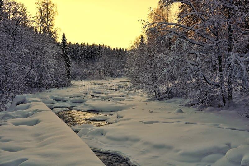 Paesaggio di Snowy e fiume glassato immagine stock