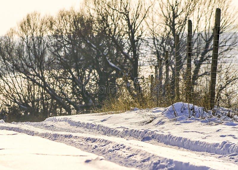 Paesaggio di tema della strada della neve di inverno durante il giorno gelido soleggiato immagine stock