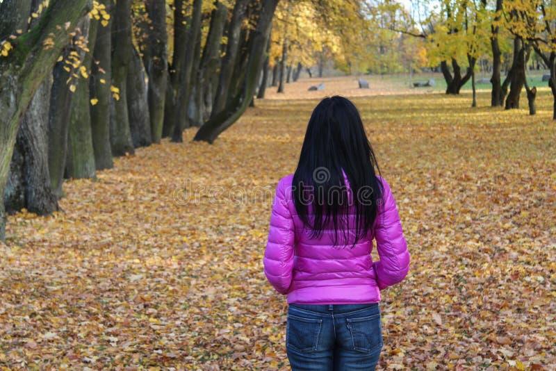 Paesaggio di trascuratezza di autunno della donna immagini stock