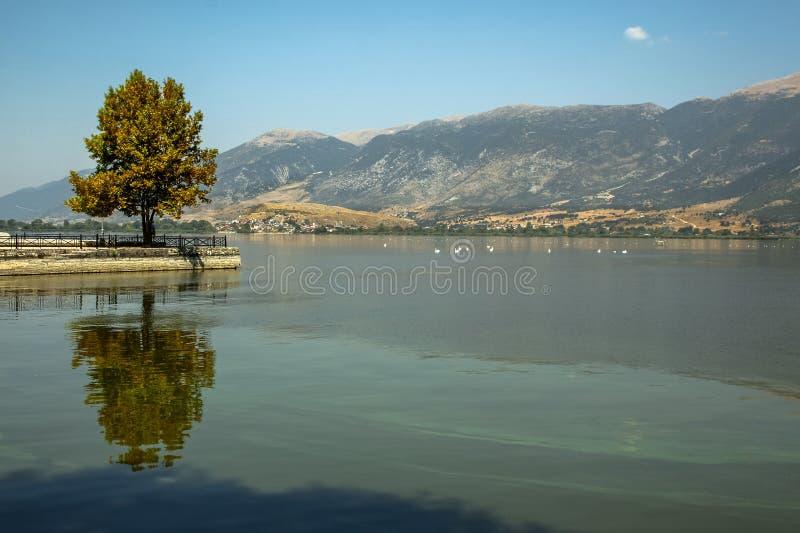 Paesaggio di un lago immagine stock