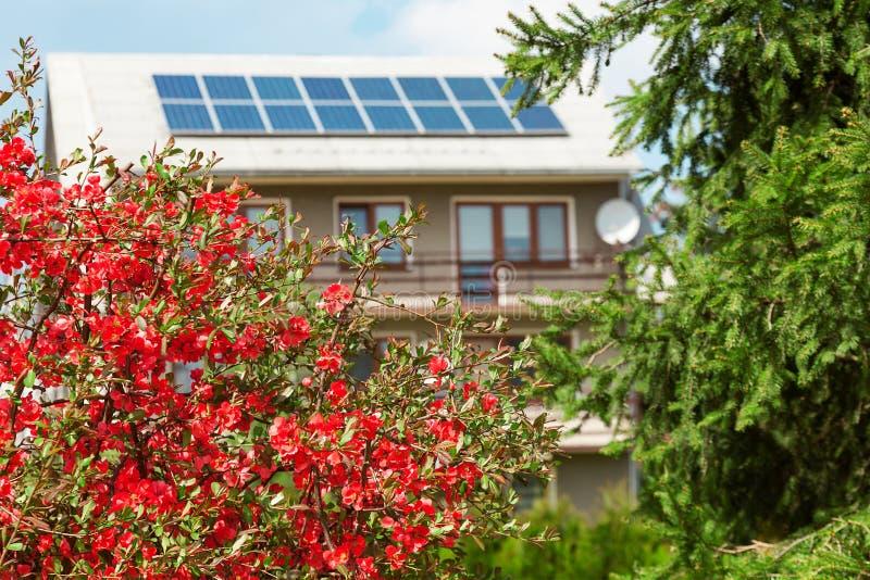 Paesaggio di una casa tradizionale ecologica nella campagna immagine stock libera da diritti