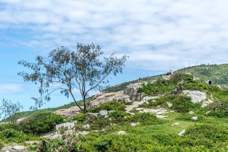 Paesaggio di una certa vegetazione su una collina su un'isola fotografie stock libere da diritti