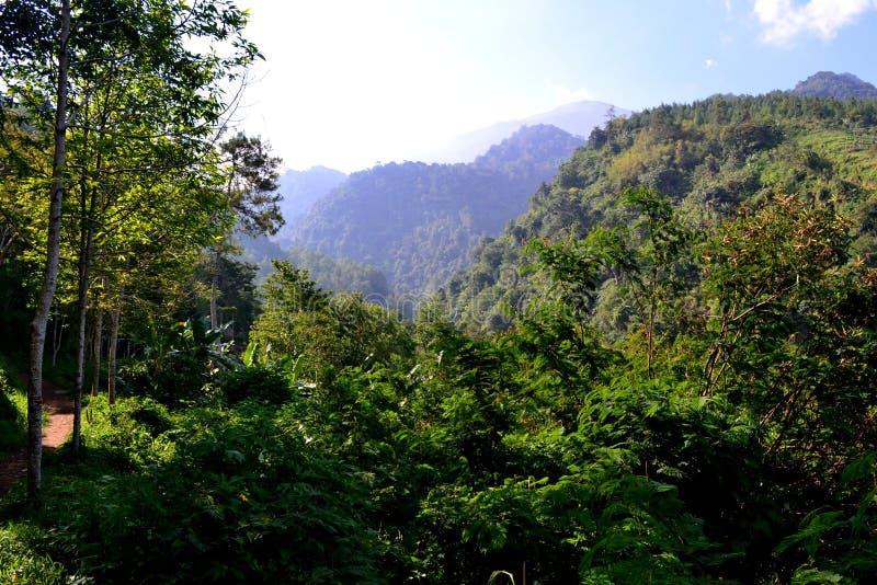 Paesaggio di una collina nella montagna fotografie stock libere da diritti