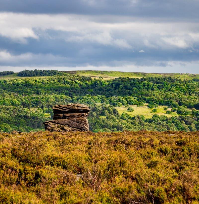 Paesaggio di una formazione rocciosa in tre strati di erba, alberi immagini stock libere da diritti