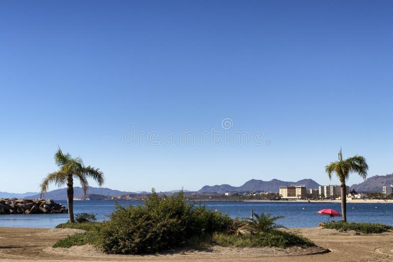Paesaggio di una spiaggia spagnola con le palme e un ombrello immagini stock libere da diritti