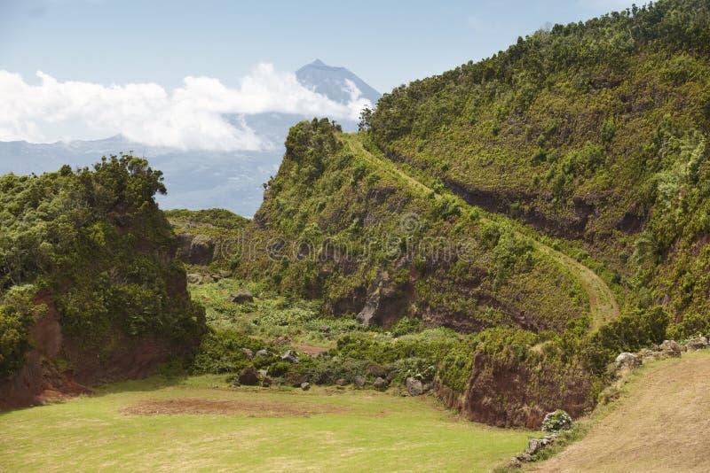 Paesaggio di verde delle Azzorre nell'isola del sao Jorge e di Pico portugal fotografie stock