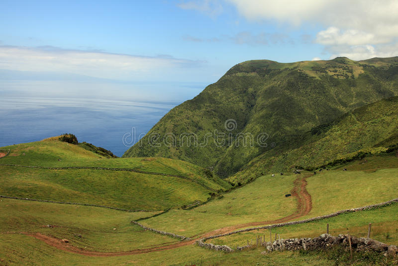 Paesaggio di Volvanic a sao Jorge, Azzorre fotografia stock libera da diritti