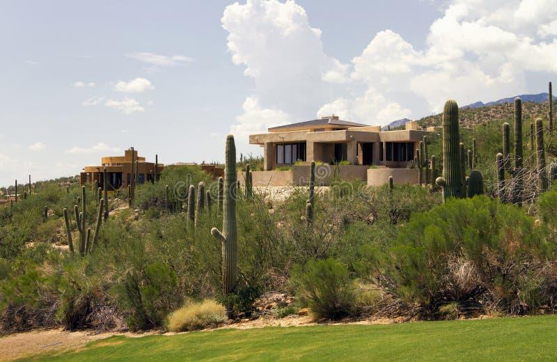 Paesaggio e case scenici di terreno da golf dell'Arizona immagini stock libere da diritti
