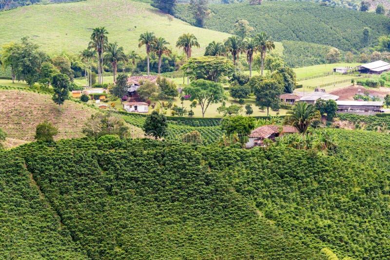Paesaggio e costruzioni del caffè fotografie stock