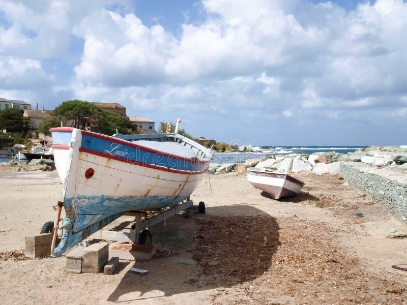 Paesaggio e foresta costieri di Cap Corse fotografia stock libera da diritti