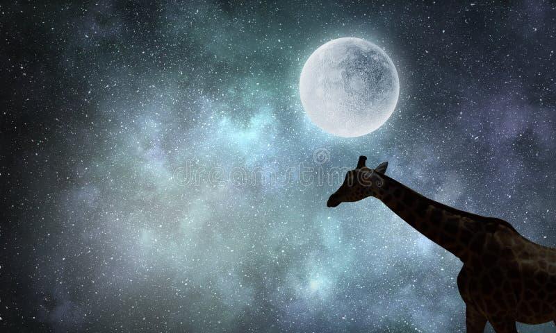 Paesaggio e giraffa naturali di safari Media misti fotografie stock libere da diritti