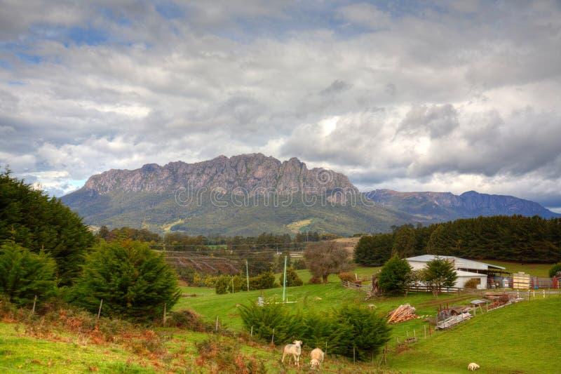 Paesaggio e montagna del terreno coltivabile in Tasmania fotografia stock libera da diritti