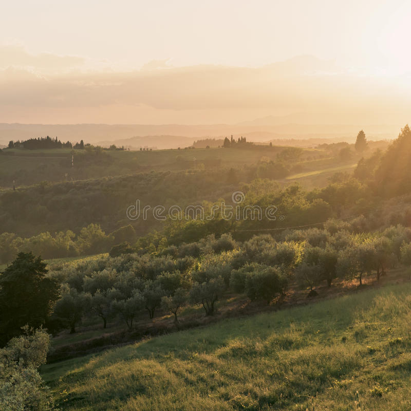 Paesaggio e tramonto La Toscana, Italia fotografia stock libera da diritti