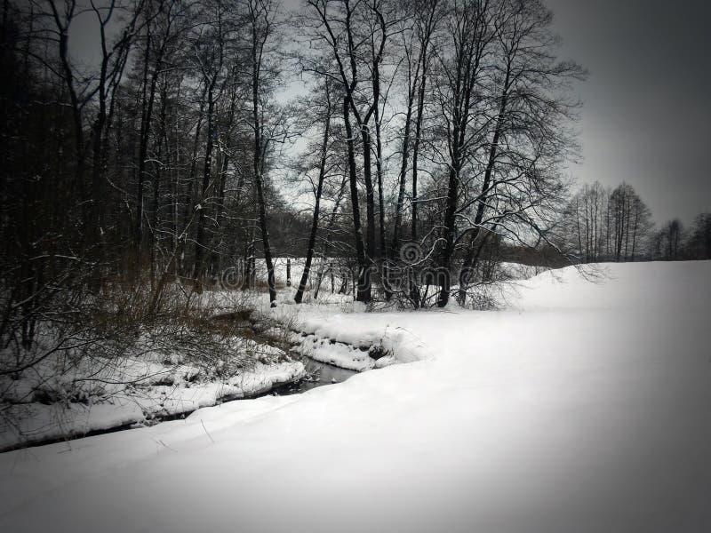 Paesaggio eccellente di inverno immagine stock