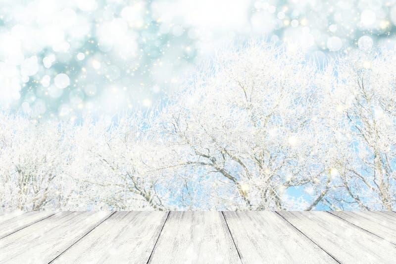 Paesaggio eccessivo di legno di inverno di prospettiva con il bokeh bianco della neve e dell'albero fotografie stock libere da diritti