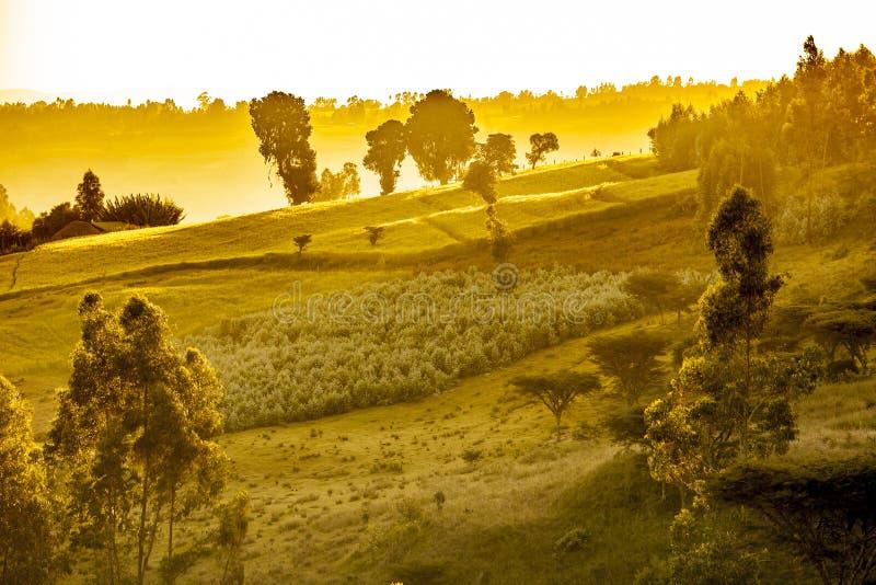 Paesaggio etiopico drammatico immagini stock