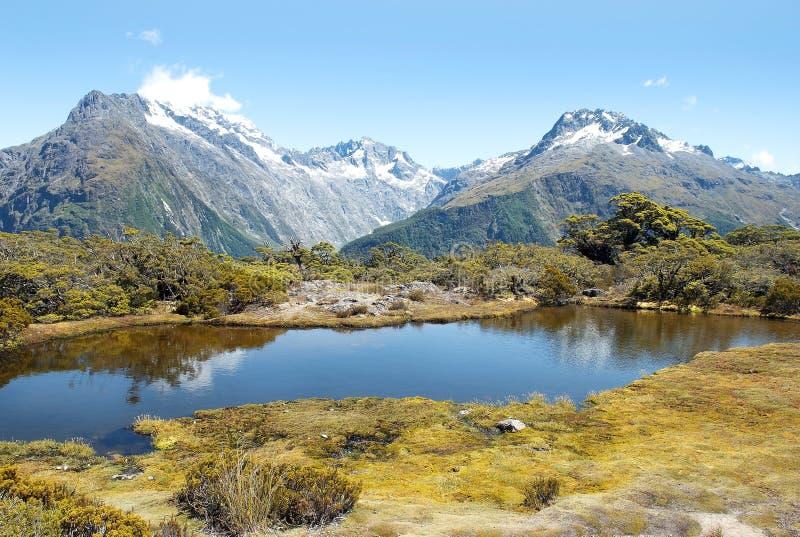 Paesaggio favoloso in Nuova Zelanda fotografia stock libera da diritti