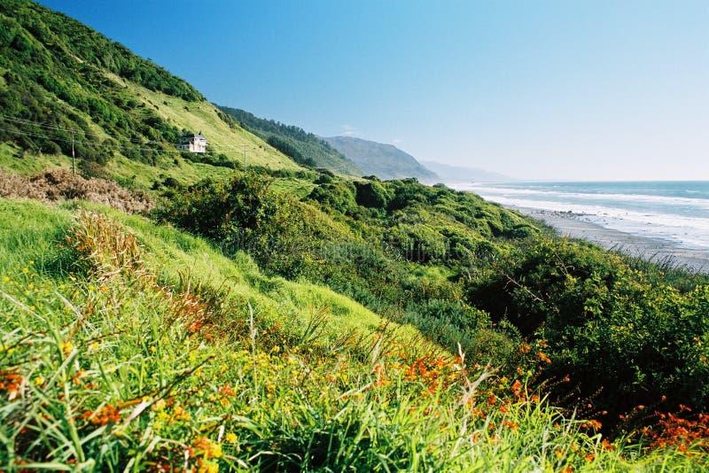 Paesaggio fertile della spiaggia fotografie stock libere da diritti