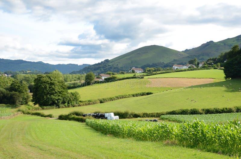 Paesaggio francese del paese, Pirenei-Atlantiques immagine stock libera da diritti