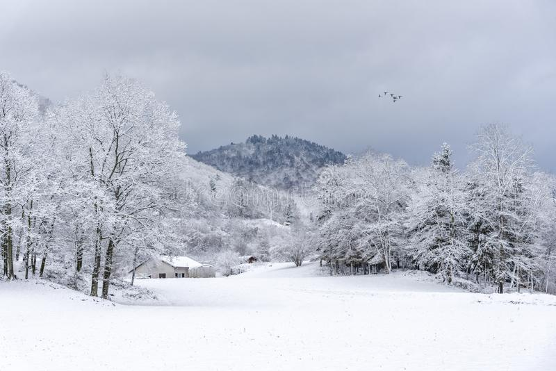 Paesaggio francese del villaggio sotto la neve immagine stock libera da diritti