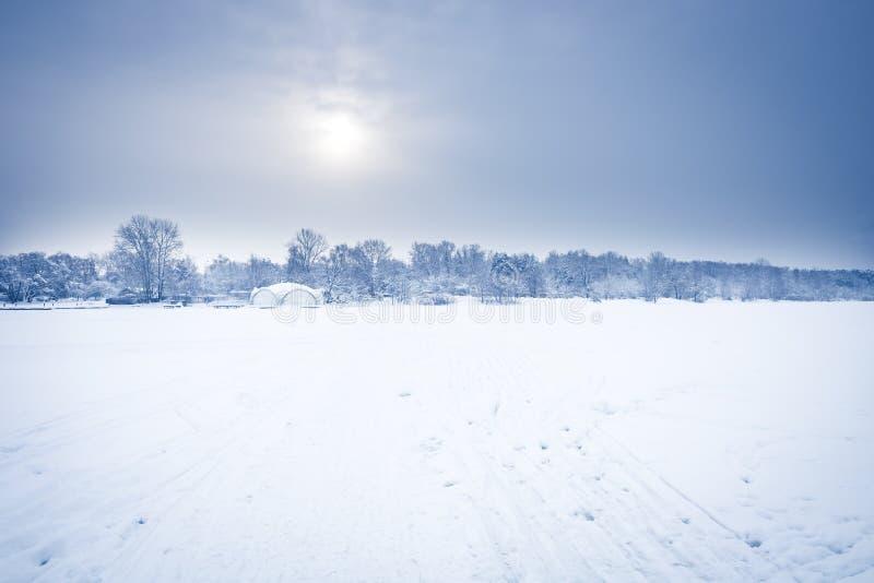 Paesaggio gelido del campo di neve di inverno di mattina con la foresta distante sull'orizzonte nel giorno di inverno freddo del  fotografia stock