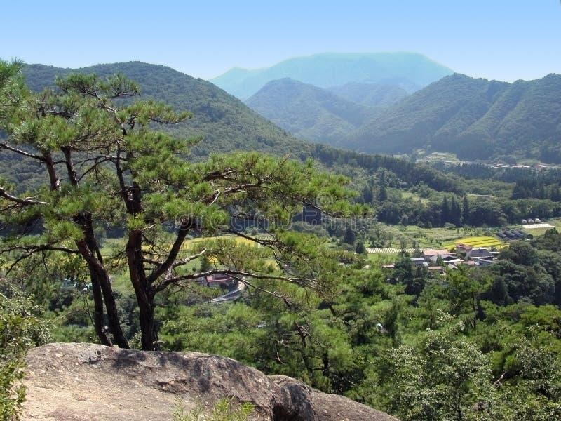 Paesaggio giapponese della valle fotografie stock libere da diritti