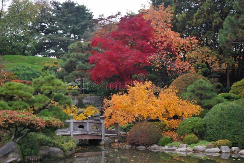 Paesaggio giapponese tradizionale del giardino fotografie stock libere da diritti