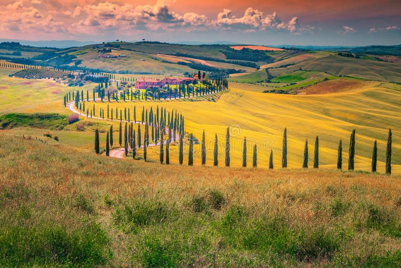 Paesaggio idilliaco della Toscana al tramonto con la strada rurale curva, Italia immagine stock libera da diritti