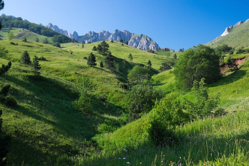 Paesaggio idillico della montagna fotografie stock libere da diritti