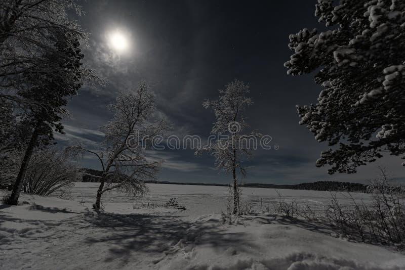 Paesaggio illuminato dalla luna di inverno di Lappish con la foresta ed il lago su cielo blu con la luna eccellente coperta nuvol fotografie stock