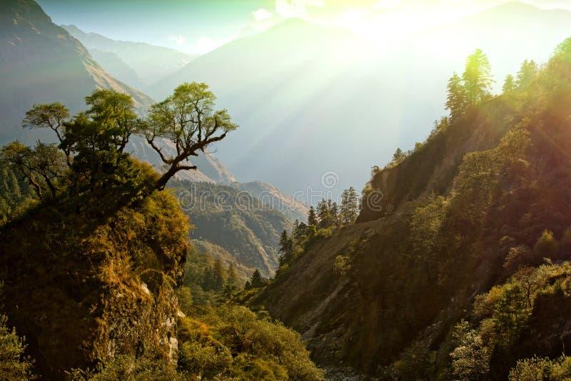 Paesaggio incantato della montagna immagini stock libere da diritti
