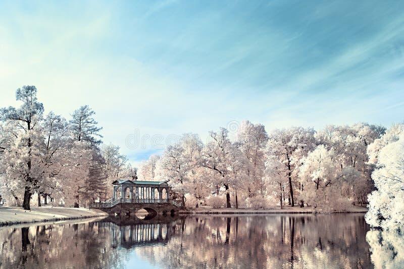 Paesaggio infrarosso nel parco con uno stagno e gli alberi immagini stock