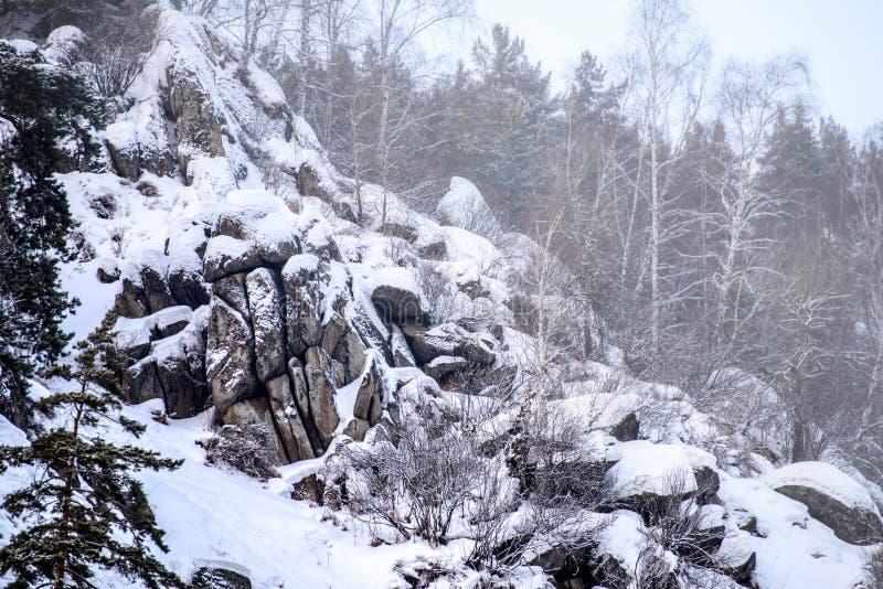 Paesaggio innevato di inverno con gli alberi e le rocce immagine stock