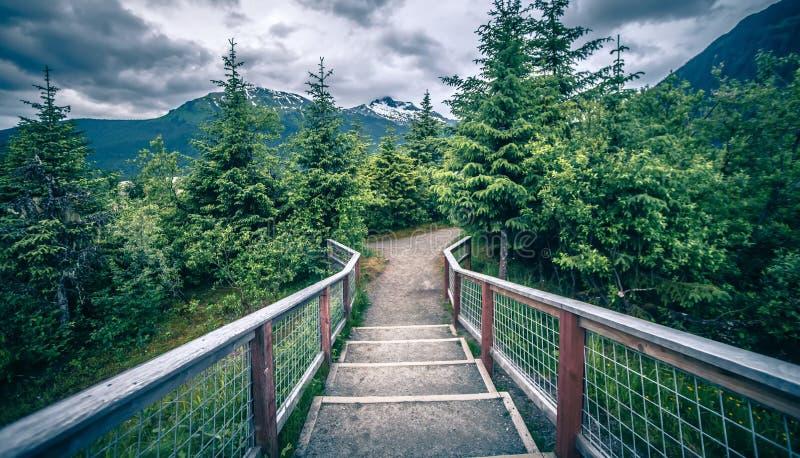 Paesaggio intorno al parco del ghiacciaio del mendenhall a juneau Alaska fotografia stock